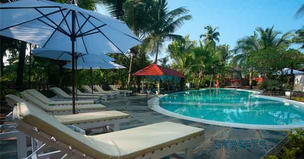 Swimming-pool,Clematis
