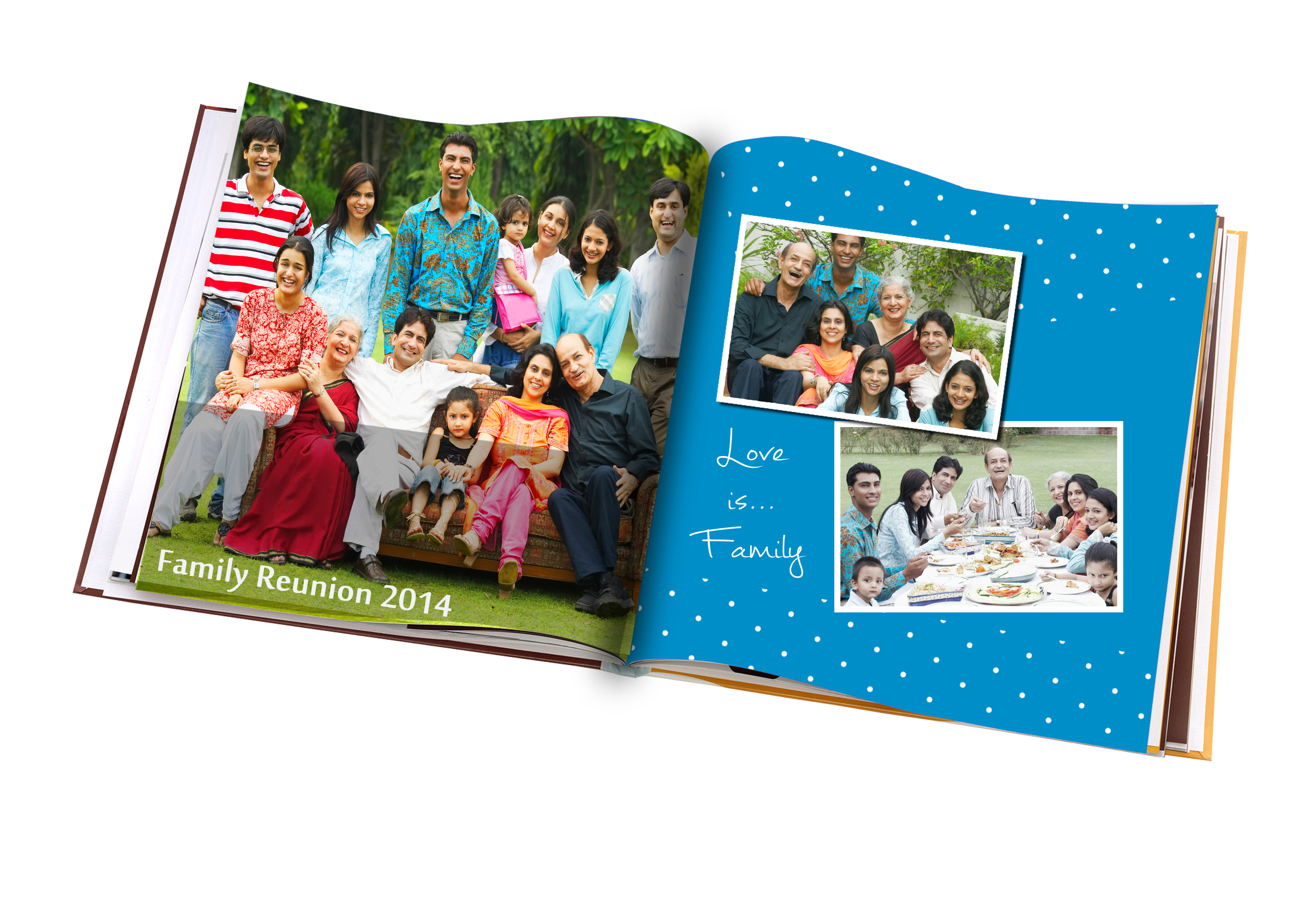 Family reunion book